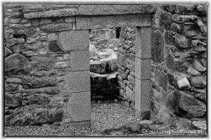 St Mullins Abbey (16)
