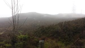 Mist blurs the heathery hills