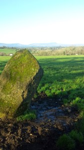 Lone standing stone at Magh Slecht.